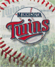 Minnesota Twins Baseball