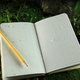 Rite in the Rain Environmental Field Book - 550 or 550F - Page Pattern