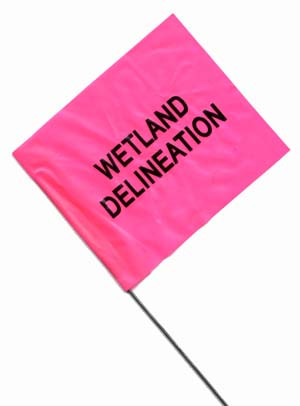 Wetland Delineation Stake Wire Flags