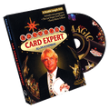 Las Vegas Card Expert by Allan Ackerman - DVD