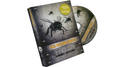 The Bumblebees (DVD and Cards) by Woody Aragon