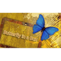 Butterfly In a Box by Mark Presley - Trick