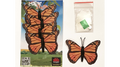 Magic Spider Butterfly Pack by Ian Pidgeon- Trick