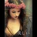 Utsukushii by Fraser Parker - Book