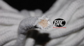 BTC Parlor Rope over 325 ft. (Extra White) (BTC2) - Trick