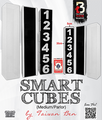 Smart Cubes (Medium / Parlor) by Taiwan Ben - Trick