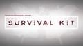 SansMinds Worker's Series: Survival Kit