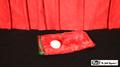 Egg Bag Zipper with Egg by Mr. Magic - Trick