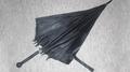 Umbrella Card Sword by Brad Toulouse-Maple Leaf Magic - Trick