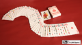 Electric Deck (52 Cards Bridge) by Mr. Magic - Trick