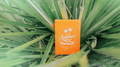 Limited Edition Summer NOC (Orange) Playing Cards