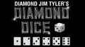 Diamond Forcing Dice Set (7) by Diamond Jim Tyler - Trick