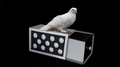 DRAWER BOX WITH HOLES (SILVER) by Tora Magic