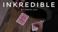 INKredible by David Luu video DOWNLOAD