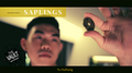 The Vault - Skymember Presents Saplings by Yu Huihang video DOWNLOAD