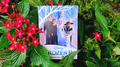 Frozen 2 Spirits Queen Ver Deck by JL Magic - Trick