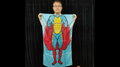 Character Silk (Super Boy) 35 X 43  by JL Magic - Trick