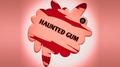 Haunted Gum by Rizki Nanda & RN Magic Presents video DOWNLOAD