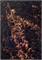 Karabella - Gossamer - Black w/ copper 5048
