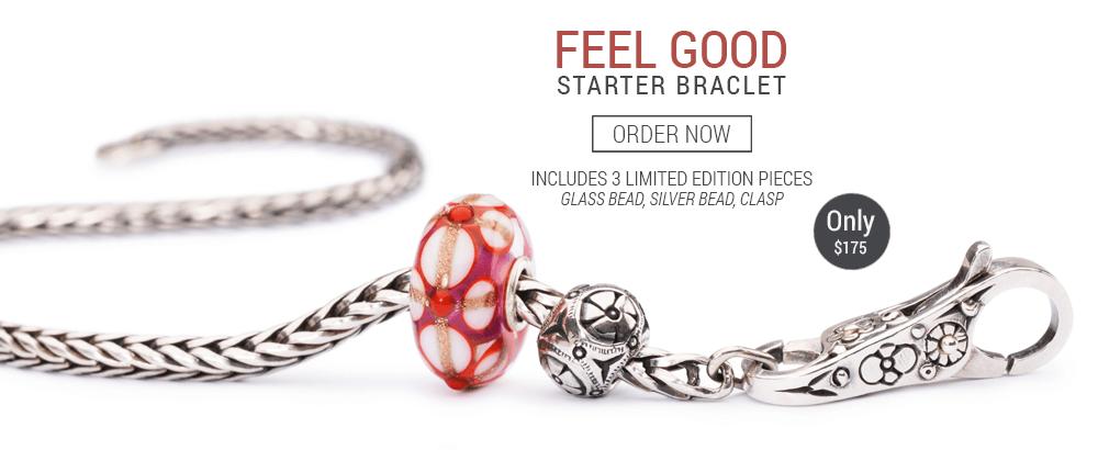 Trollbeads Starter Bracelet