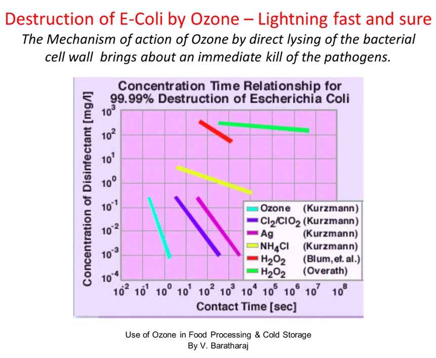 killing-e-coli-by-ozone.png