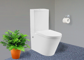 Beautiful white toliet with soft close lid.