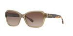 Coach Designer Sunglasses in Green Brown Frame/ Grey Lens HC8232-550813-56mm