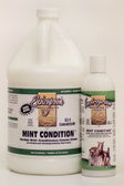 Mint Conditoner 32:1 Concentrate