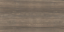 Eramosa Natural HD Polished Rectified Porcelain 12x24