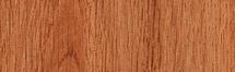 Arborea Danae Porcelain 4x24