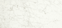 I Marmi Carrara Rectified Matte Porcelain 12x24