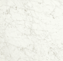 I Marmi Carrara Rectified Matte Porcelain 24x24