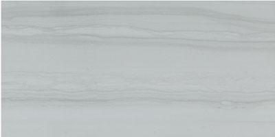 Serpentino - Gris Porcelain 12x24