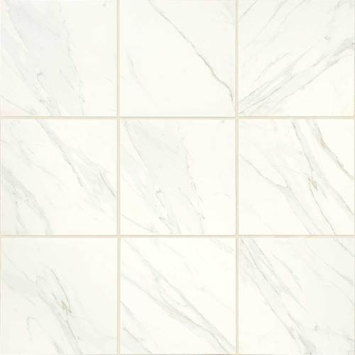 Florentine Collection - Carrara Matte Porcelain 12x12