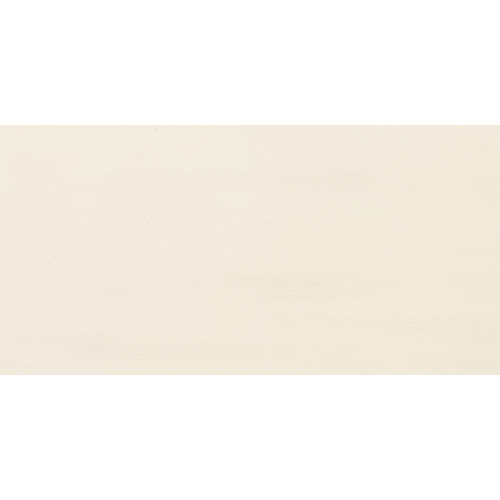 Formula Collection - Theorem Ivory Unpolished Porcelain 24x48