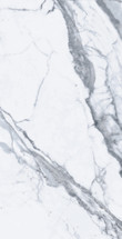Bianco Venatino 24x48 Rectified Polished Porcelain (UFBIAVEN-2448)