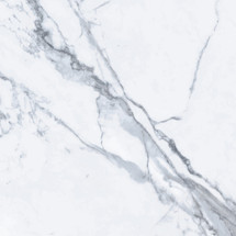 Bianco Venatino 24x24 Rectified Polished Porcelain (UFBIAVEN-24)