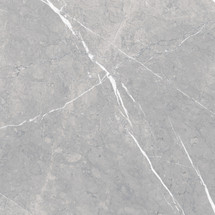 Piasentina Silver 24x24 Polished Porcelain (UFPIASLV-24)
