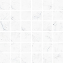 Carrara 2x2 Mosaic (VALCAR22M)