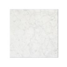 Bianco Carrara Honed 12X12
