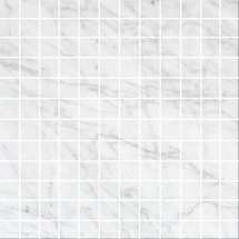 Bianco Carrara Polished 1X1