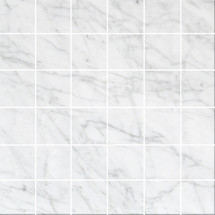 Bianco Carrara Polished 2X2