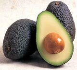 "Avocado Hass - 24"" Box"