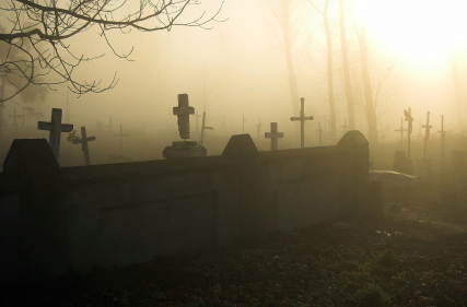 Creeping Zombie Low Lying Ground Fog Fluid Free Shipping