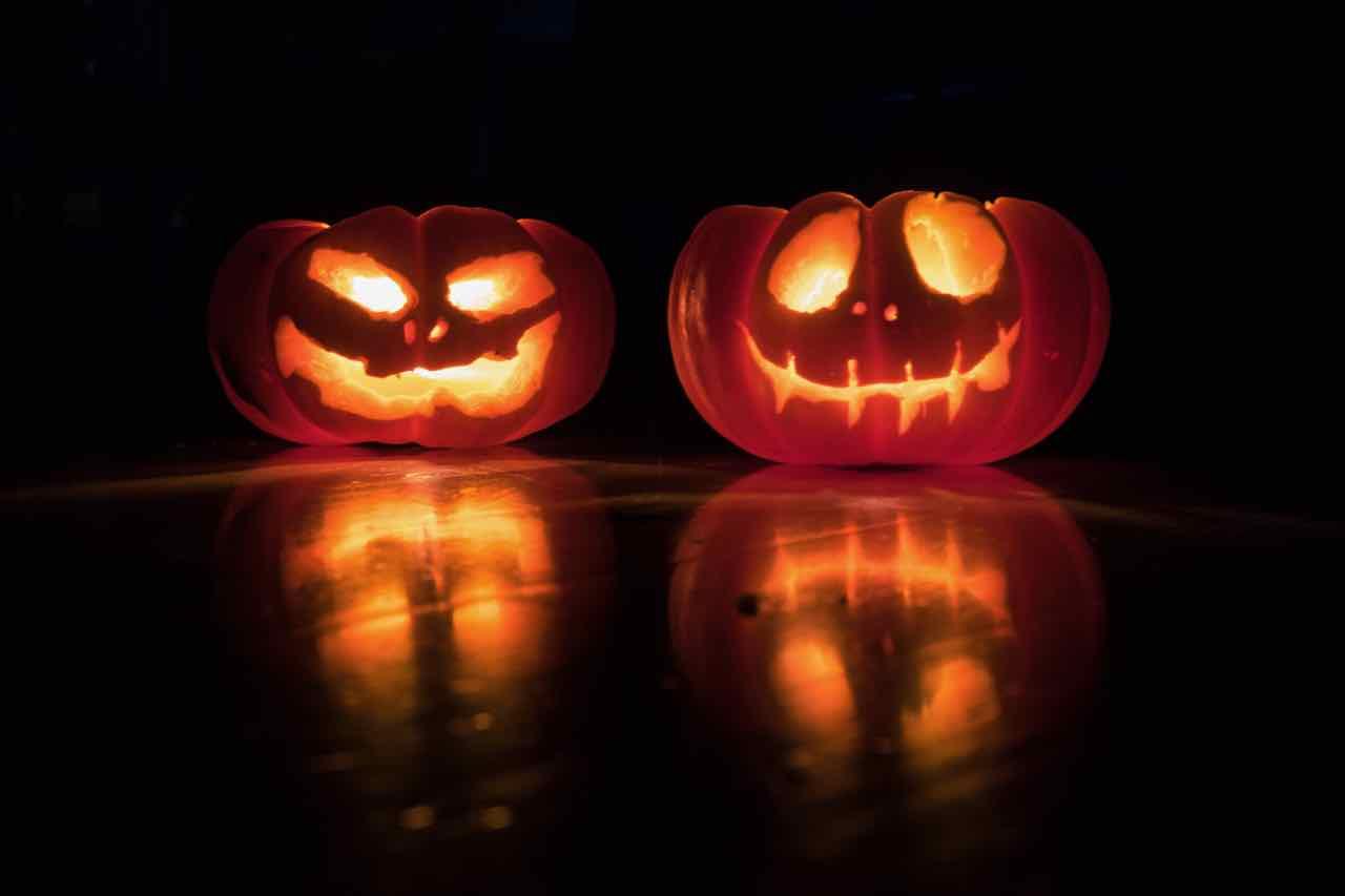 maranoia pumpkin