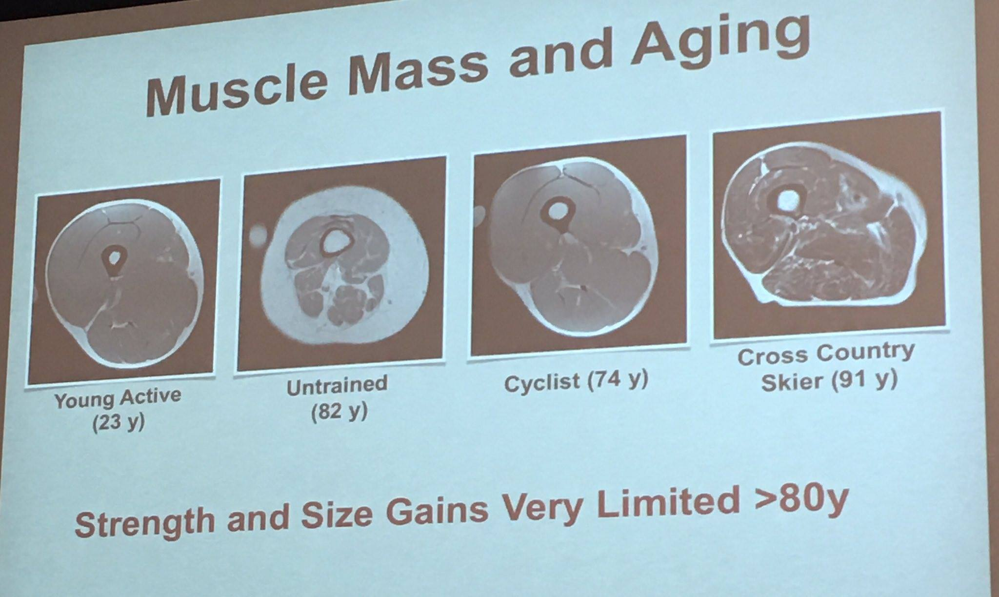 Muscle mass loss over 40