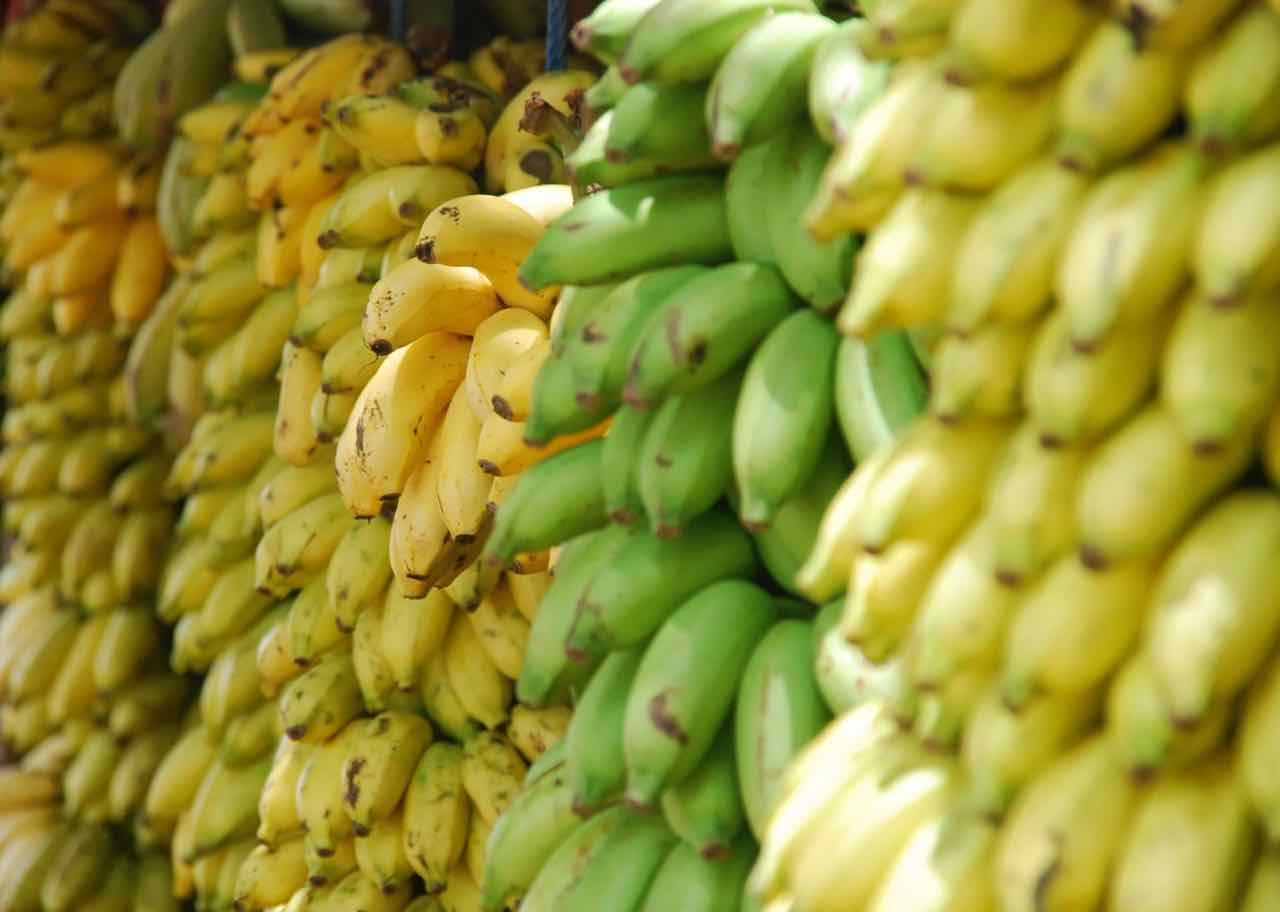 Superfoods for energy - banana