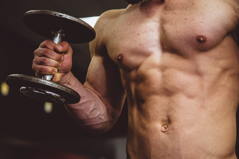 whey protein v plant protein - plants grow muscle too you know