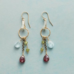 Alpine Glimpse Earrings