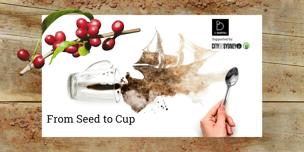 Seed-To-Cup